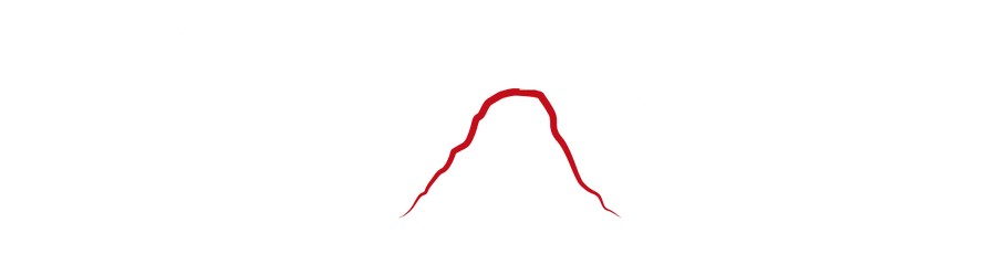 pro-armor infographic