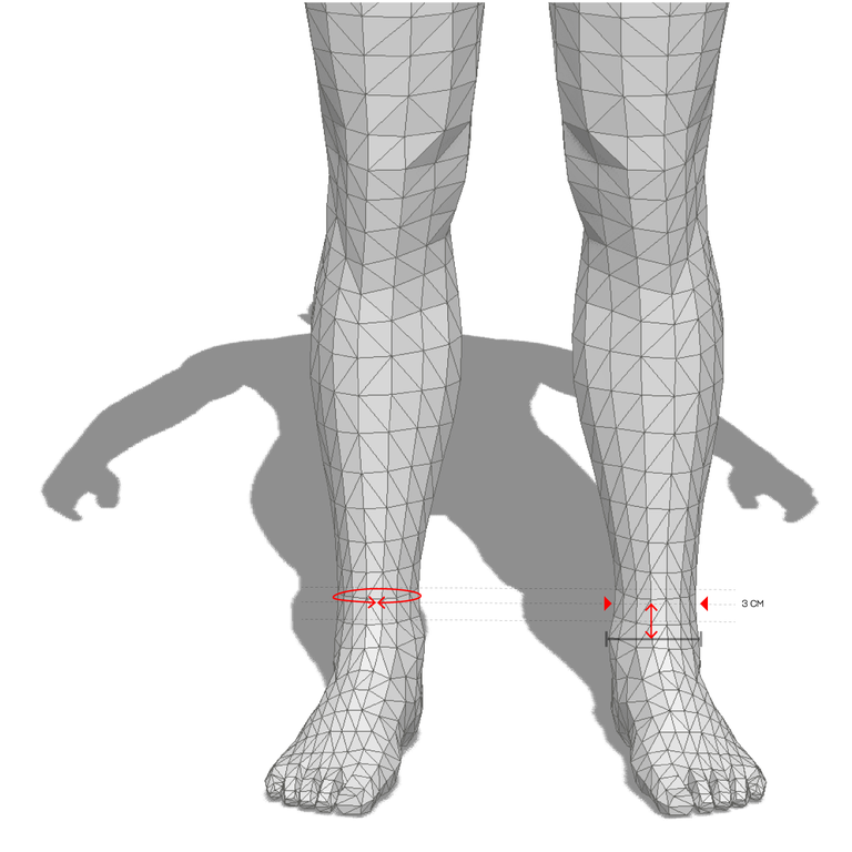 ANKLE CIRCUMFERENCE
