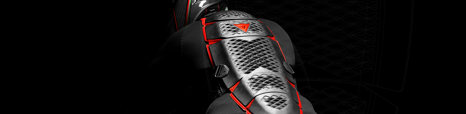 Dainese Motorbike Back Protectors